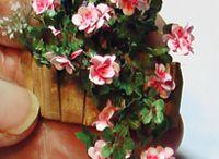 Miniature Flowers / by Paulette Svec