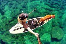 O C E A N  / Surfing, waves, bikinis & sunsets