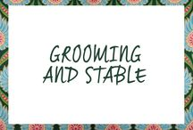 Grooming & Stable / Find your grooming and stable items here!  | Shop at: http://www.ej.nl/english/stable-more/ for stable and more. | Shop at: http://www.ej.nl/english/horse/brushing-grooming/ for brushig & grooming / by Epplejeck