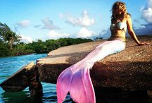 eli marmaid