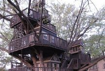 Tree Houses / by Analisa Toma