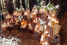 Enchanted Forest / Decoration ideas :)
