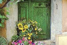 Doors and Shutters / by Jillian Zepeda