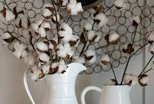 Cotton Decor / Cotton