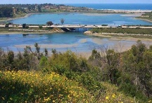 Carlsbad Lagoons / Carlsbad, CA's lagoons are filled with beauty, wildlife and fun activities.