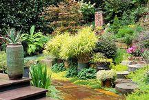 Landscape/Garden / by Wendy Ibison-Tabor