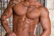 MUSCLE  ADONIS .
