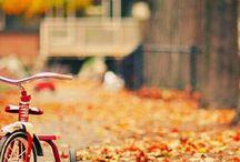 Sonnet d'automne