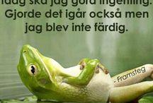 grodor