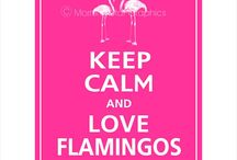 Flamingo Love / by Brandi Perry