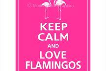 flamingo & tropics