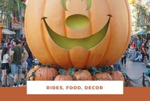Disneyland Tips / Tips about Disneyland rides, food, decor and events!