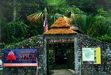 Penang Resorts / Great accomodations and resorts in Penang.