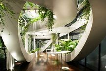 Indoor Gardening / by Abdullah Khamis