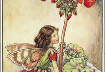 Fairys / Blumenfeen