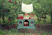 Apple Party Ideas / by Cristy Mishkula @ Pretty My Party
