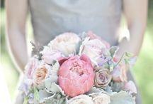 Weddings / by Candy Pilgrim
