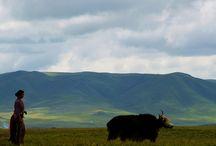 Landschaft in Tibet / Einzigartige Landschaften vom Dach der Welt!