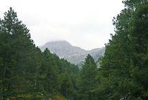 Dağlar dağlar