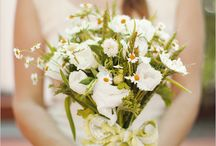 Daisy / wedding ideas