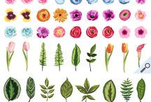 Plants, Flowers & Gardens