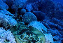 Under the Sea Beautiful