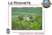 "Agriturismo ""Le Roghete"""