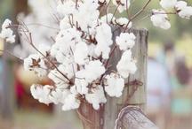 Cotton wedding design