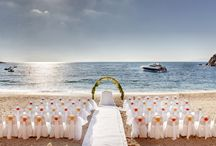 Wedding Ideas / Collection of Wedding ideas Sept 2014