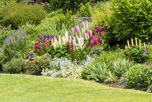 chalupa zahrada