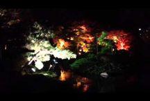 TaiHokkeShishamo YouTube