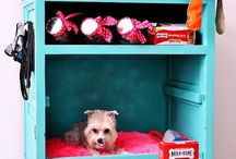 Great ideas for your pup