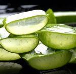 Aloe Vera Uses / Check out the many wonderful uses of this amazing healing plant.