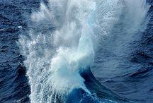 Ocean Appreciation