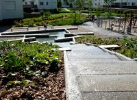 Landscape Architecture my Design / This Board shows my own design of Landscape Architecture, Gardens, Public Space etc.