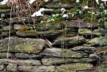 MURS EN PIERRE PRINTEMPS ETE AUTOMNE HIVER / La pierre naturelle est un matériau durable, solide qui se patine avec le temps et les saisons... Petit conseil à l'approche des saisons humides : entretenez les arases, rebouchez les fissures, rénovez les joins de vos murs pour maintenir une parfaite étanchéité et garantir la solidité de votre mur dans le temps