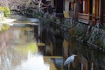 Kyoto / Kyoto
