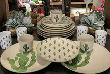 All About Cactus, Succulent, Sansiviera