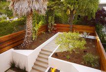 Gardening and Plants / by Jones