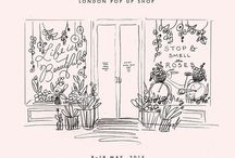Illustrations / by Annabel Bird