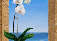 orkide4