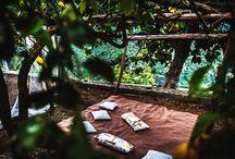 Rustic Wedding Venues / under the lemon gorves