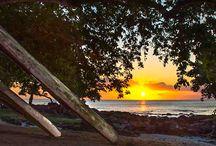 ll destination :: Mauritius ll