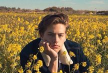 ✴Cole Sprouse✴
