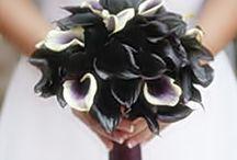 Floral Arrangements / by Lynn Gomez