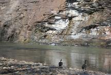 Vermilion River Reservation