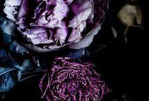 ultra violet / ultra violet wedding inspiration