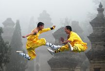 Martial Arts / by Scott Batchelor