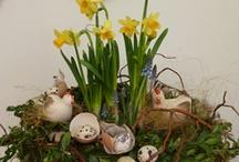 Spring- jaro