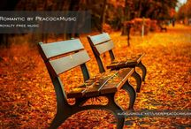 Cinematic Royalty Free Music - Romantic Music / Sentimental, warm and relaxing tracks great for photo slideshows, family movies, wedding videos, commercials, or any project needing a romantic vibe. Orchestral Music, Background Music, Cinematic Music, Music Licensing, Commercial Music, Music library, Music Production, Music Site, Music Youtube, Music Website, Stock Music.